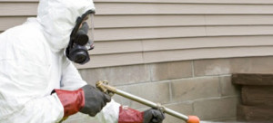 The Dangers of Fumigation and How To Avoid Them