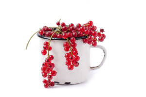 Heap of fresh currant in vintage cup over white