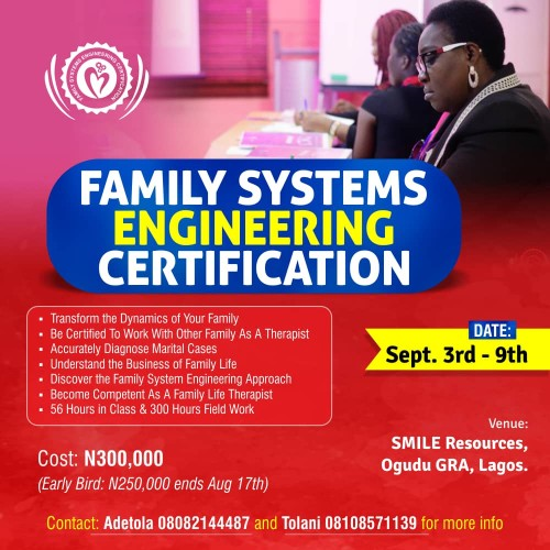 The Family Systems Engineering Certification   Lagosmums