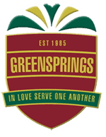 greensprings sponsors and vendors lagosmums