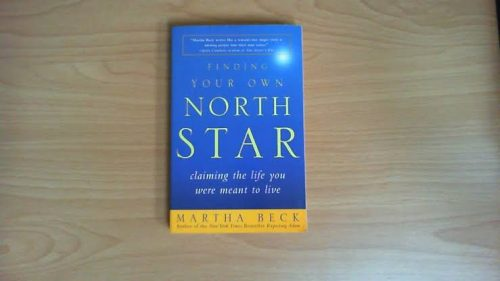 finding your own north star lagosmums